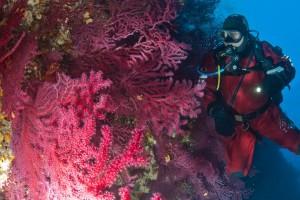 formation-plongee-sous-marine-tek